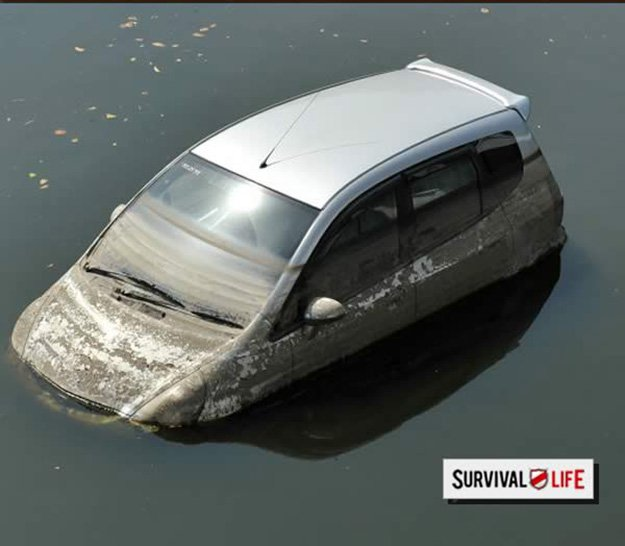 Learn how to Escape from a Sinking Car | Disaster Survival Skills: Getting Ready for the Worst