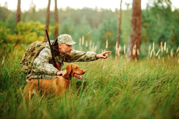 Bring a Dog | Practical Quail Hunting Tips Every Hunter Should Follow | how to hunt quail without a dog