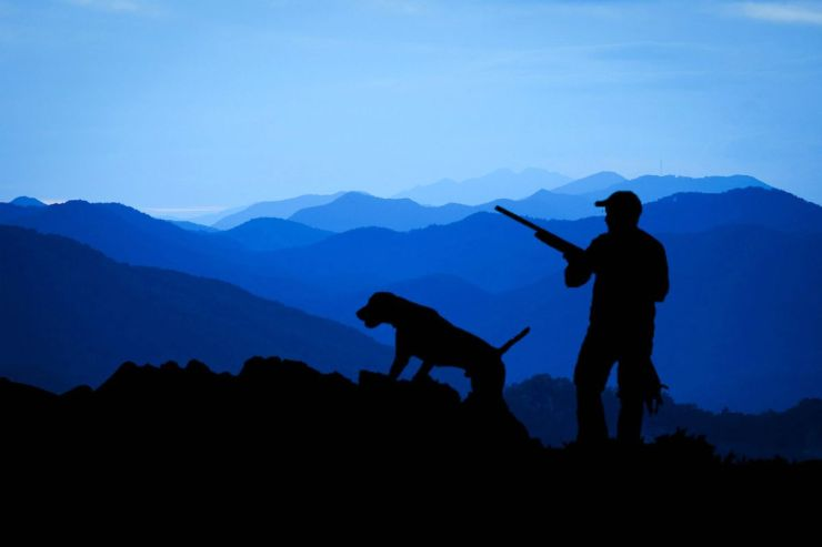 Hunter with his dog blue backgound | Fido On The Hunt: A Complete Guide To Dog Hunting Gear
