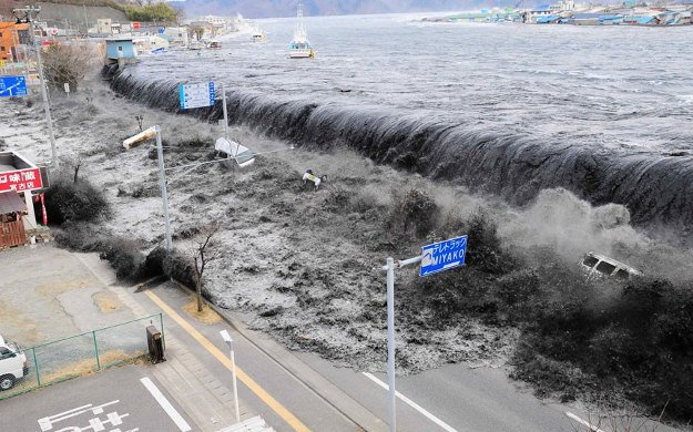Don't Go Near The Shore | Tsunami Preparedness Tips | What You Should Do When A Tsunami Comes
