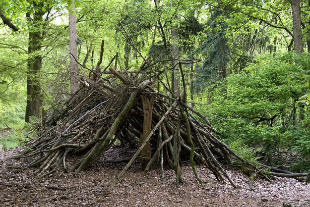 Building Shelter | Six Basic Wilderness Survival Skills