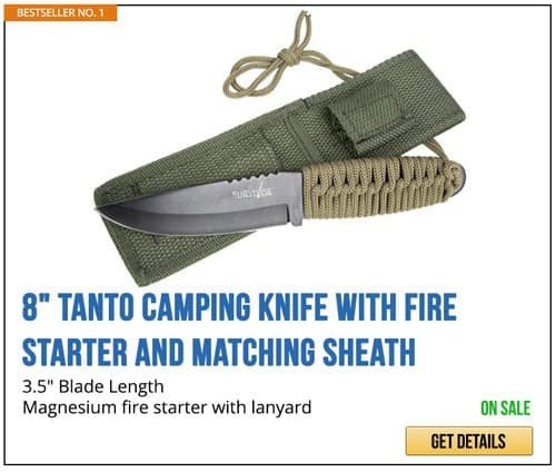 Tanto Knife | Artificial Intelligence Takeover | How Likely It Is And How To Prepare