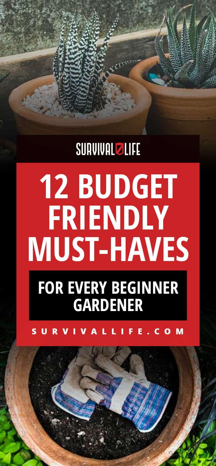 12 Budget Friendly Must-Haves For Every Beginner Gardener
