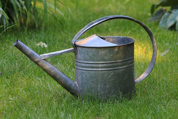 Watering Can | 50 Easter Egg Hiding Spots