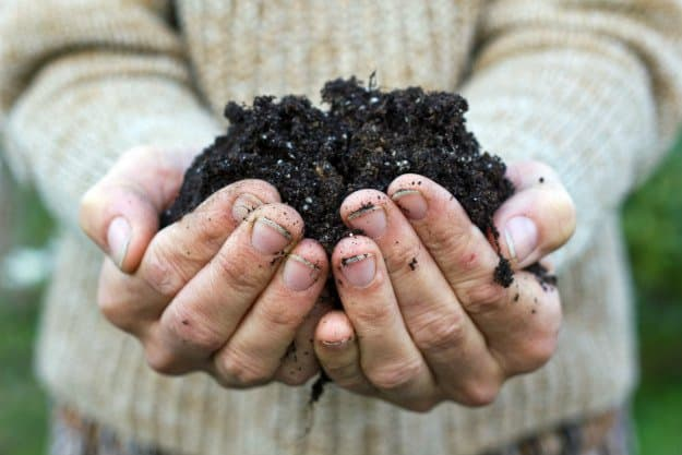 hand with soil | Composting For Beginners