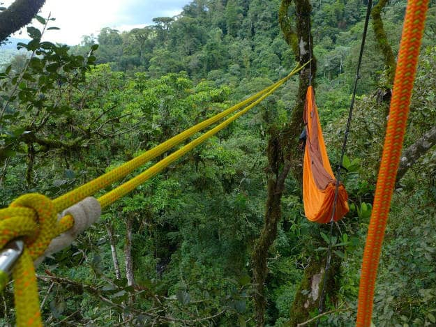 A Tree Top Hammock In The Rainforest | 14 Survival Shelters You Can Build For Any Situation