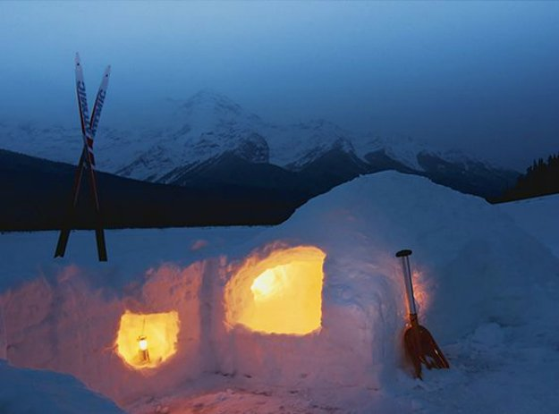 A Snow Shelter   14 Survival Shelters You Can Build For Any Situation