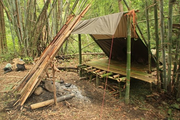 Find a good spot | How To Build A Bamboo House In The Wild | Survival Life Shelter