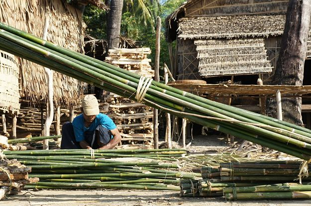 Prepare the materials | How To Build A Bamboo House In The Wild | Survival Life Shelter