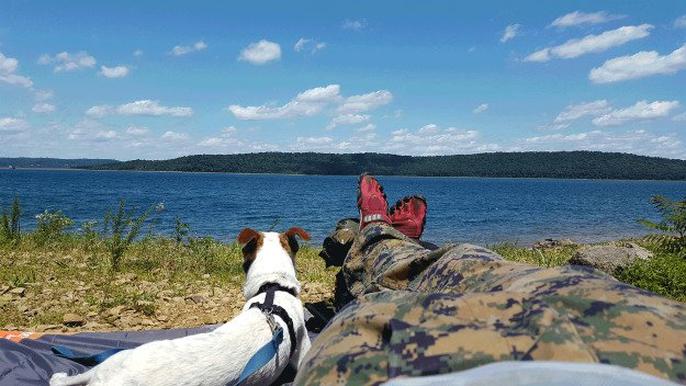 10 Must Have Items You Need When Hiking With Your Dog blanket