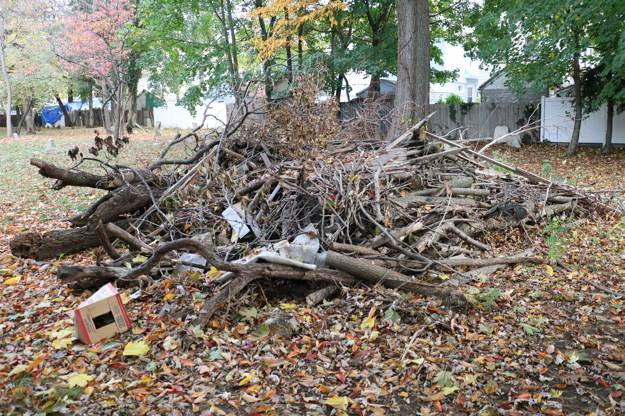 Gathering Natural Materials | Survival Shelters | Create Survival Shelters From Debris