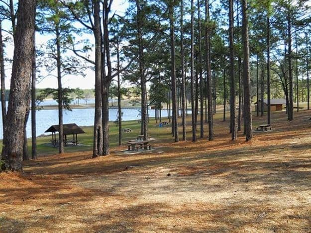 """Camping in Mississippi 