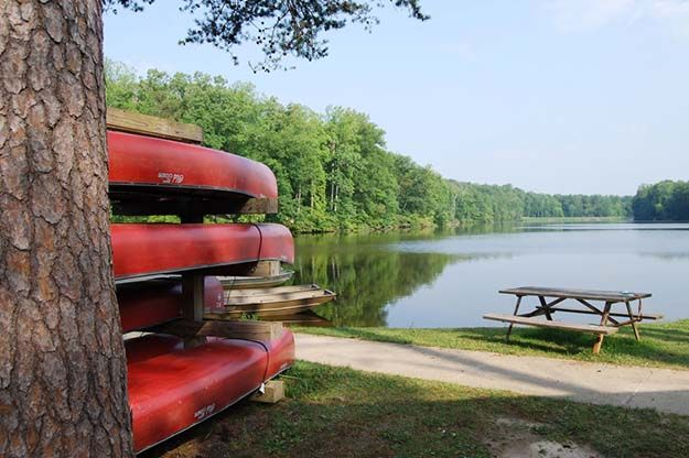 Camping in Virginia | Ultimate List of Campgrounds Around US | Survival Life Camping Spots List