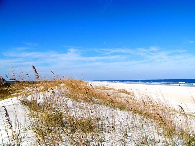 """Camping in Florida 