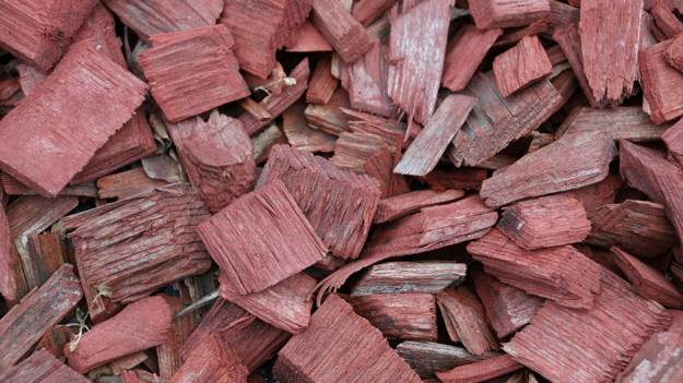 Choose Your Wood | How To Smoke Meat For Survival