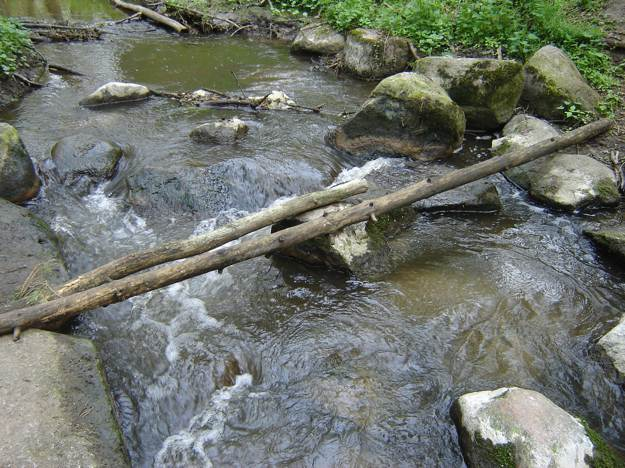 Look Before Crossing | Survival Skills: Cross Rivers And Rapids Safely