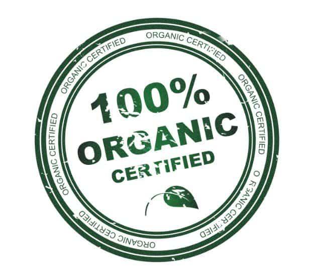 Go Organic | Tips for Raising Healthy Pigs