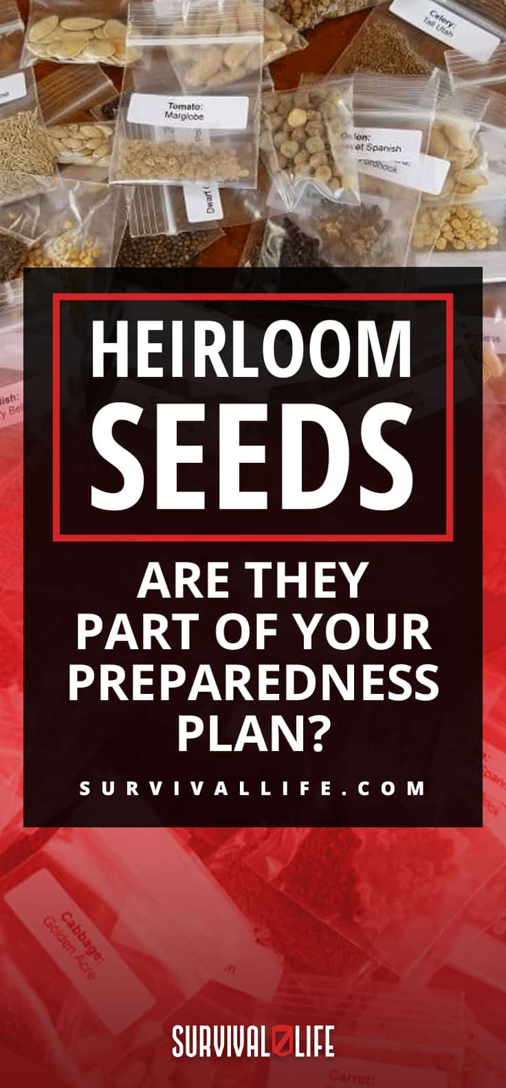 Heirloom Seeds | Heirloom Seeds: Are They Part Of Your Preparedness Plan?