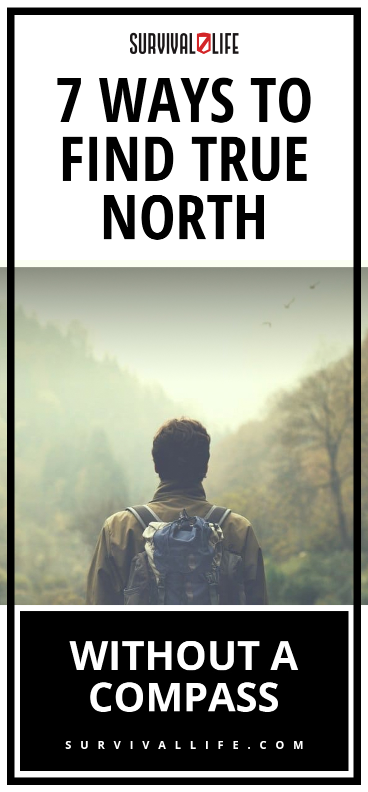 Ways To Find True North Without A Compass | https://survivallife.com/true-north-without-compass/