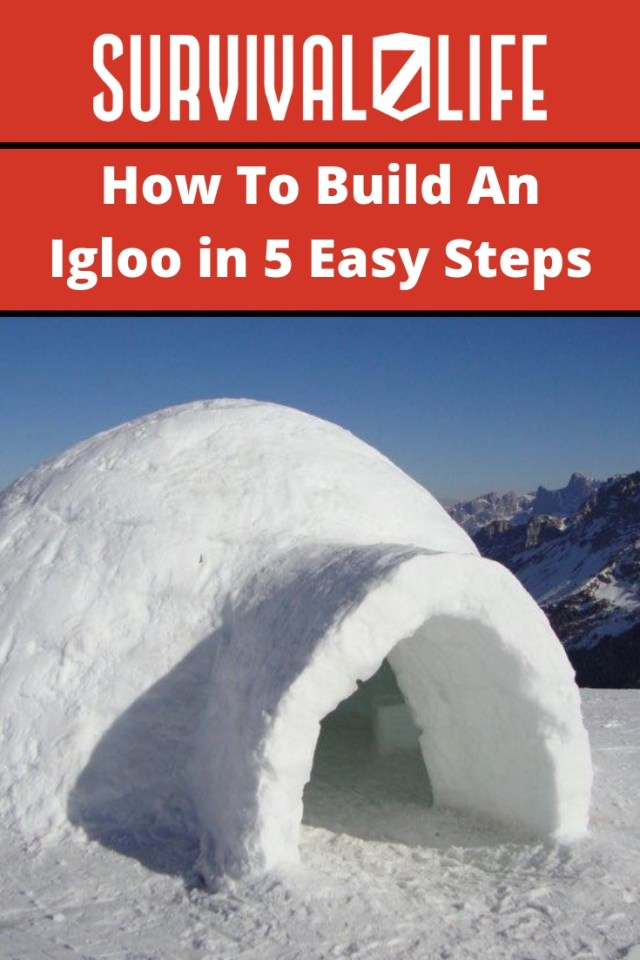 Placard | How To Build An Igloo in 5 Easy Steps