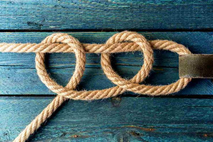 Two half hitches knot | Essential Knots Every Survivalist Needs To Know