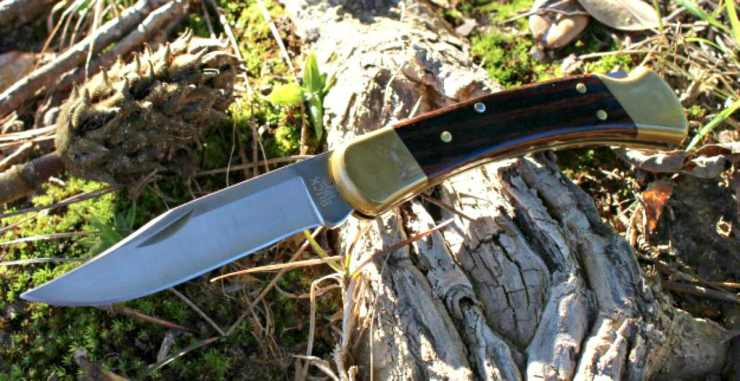 Buck knife | Eye-Catching Folding Hunting Knives