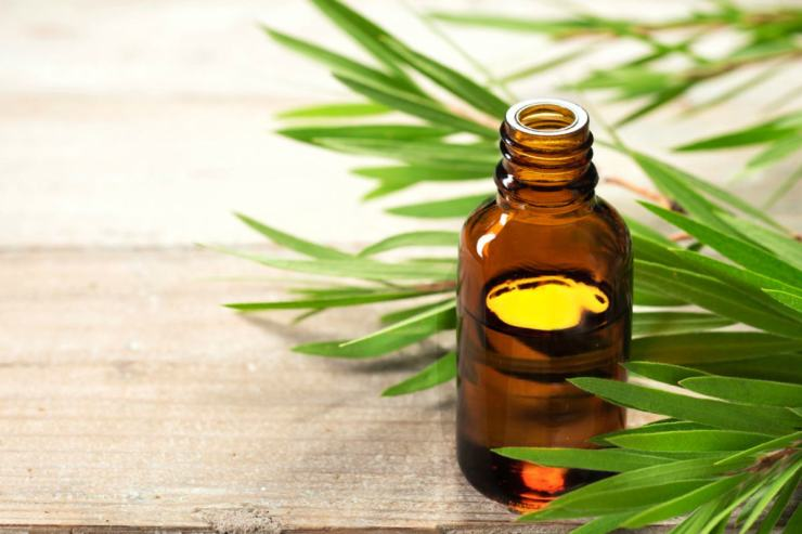 Tea tree oil bottle | Home Remedies For Toothache Pain Relief