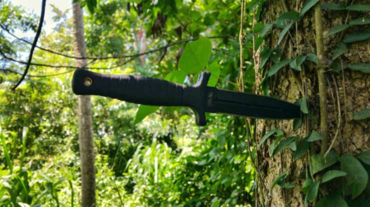 "Knife in a tree | ""Old World"" Primitive Survival Skills You'll WISH You Knew Before SHTF"