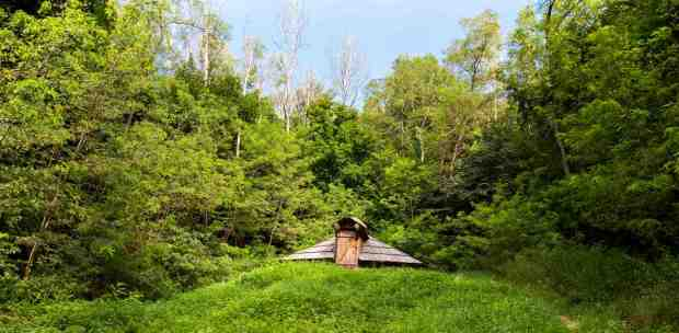 A dugout on the green hills in the forest | How To Create A Dug Out Survival Shelter