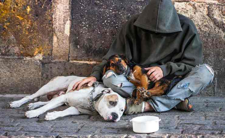 Homeless with two Dogs | Homeless Survival Tips | How To Survive On The Streets