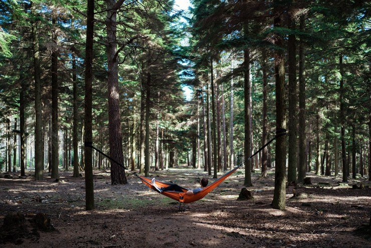 That Means More Campsites! | Tent vs. Hammock Camping: And The Winner Is...