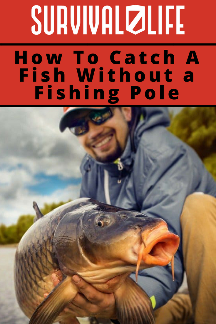 Placard |How To Catch A Fish Without a Fishing Pole | Homemade Survival Fishing Kit