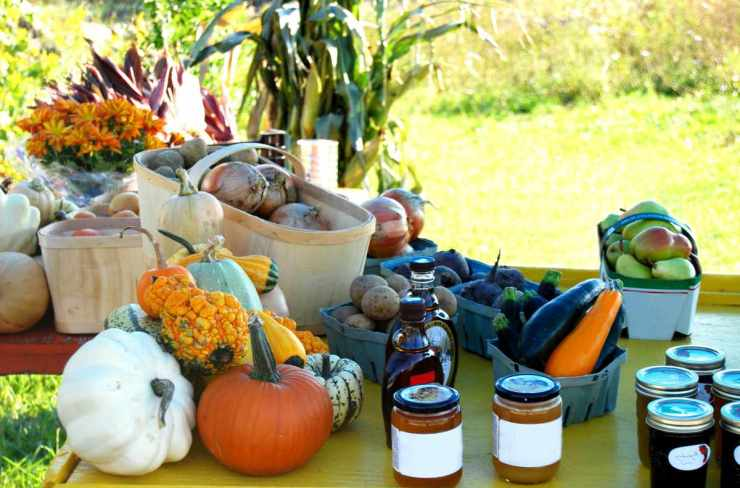Vegetable stand with preserves | Self-Sufficiency Skills Every Prepper Should Learn
