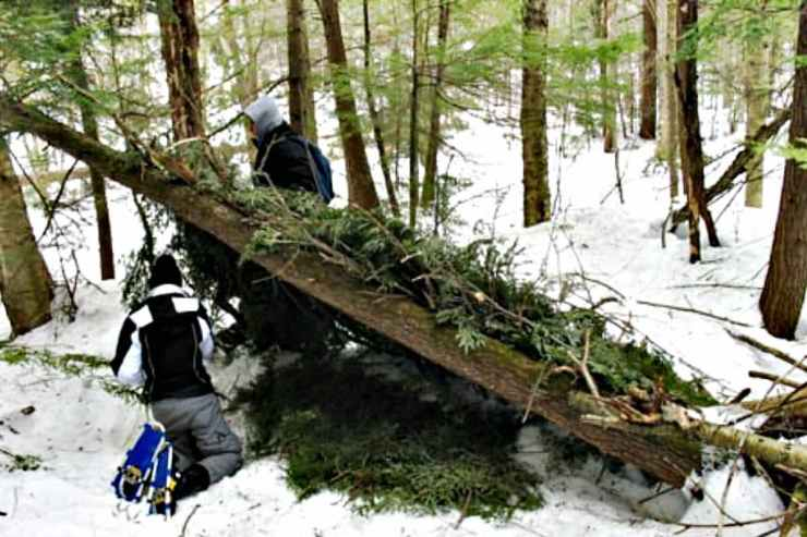 Roofing | Snow Survival Shelter