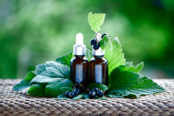 styled bottles of Blackcurrant Seed Extract Oil | Top Beard Wash Ingredients and What They Do