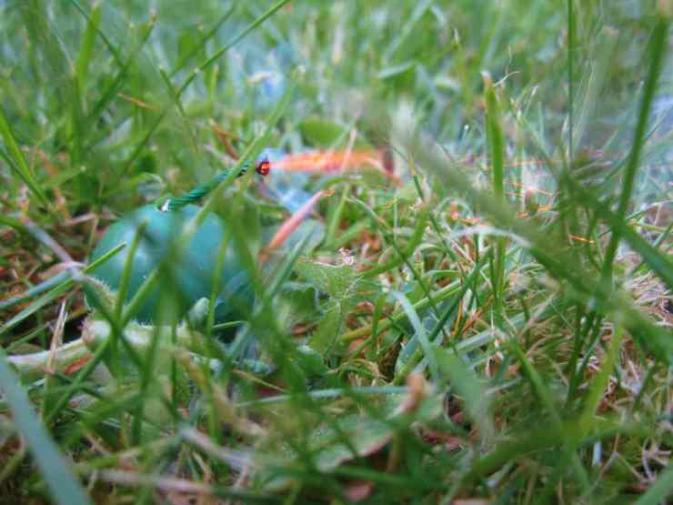 Slow Burning Fuse in the Grass | Unusual Booby Traps to Protect Your Home