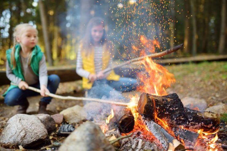 cute-little-sisters-roasting-hotdogs-on | campfire
