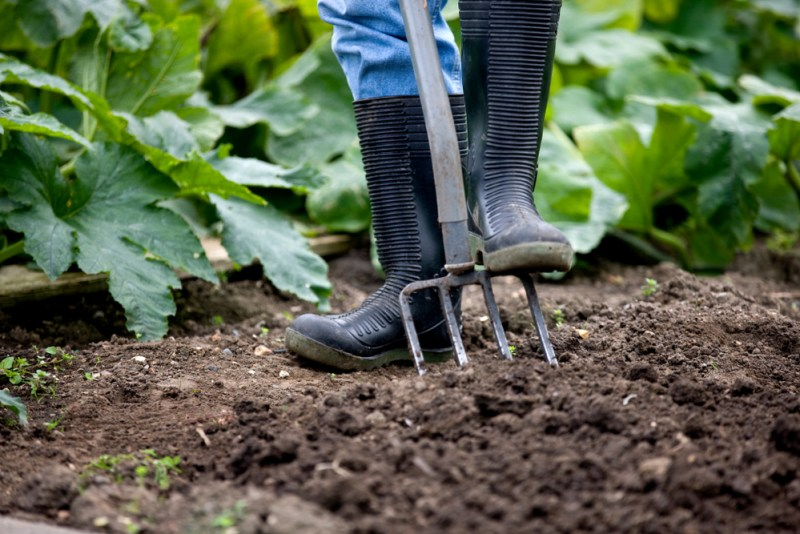 Garden Fork | Gardening Hand Tools You Should Have