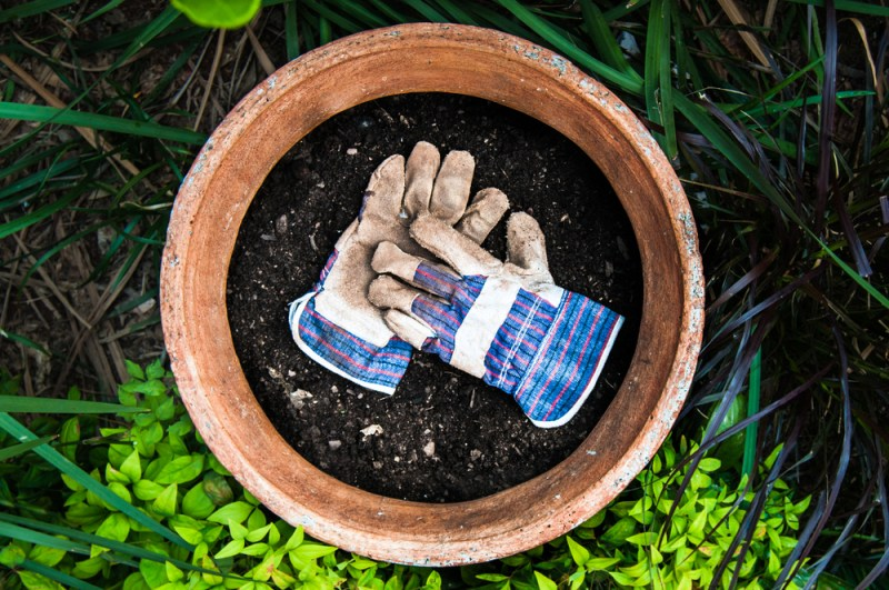 Gardening Gloves | Gardening Hand Tools You Should Have