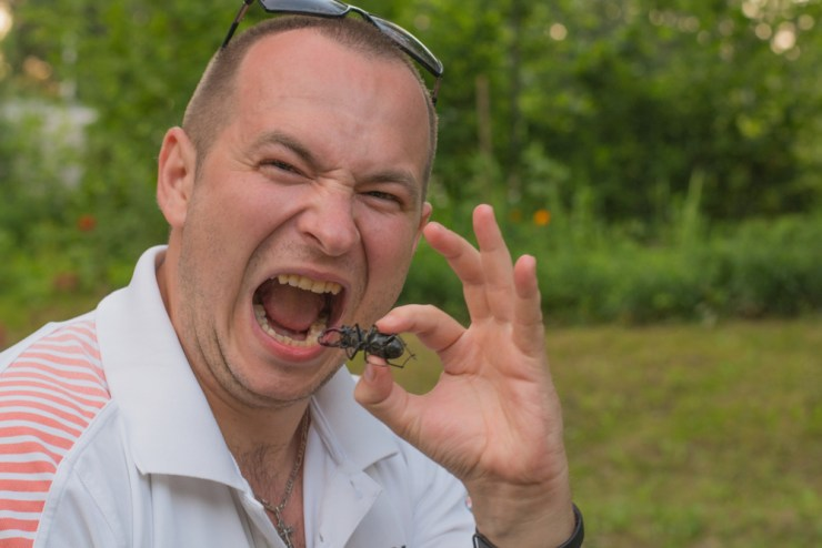 Getting Used to Bugs | Survival Foods: Bugs, Insects, and Related Recipes