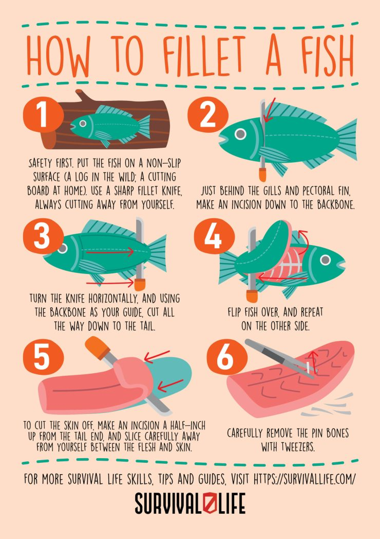 How to fillet a fish instructographic