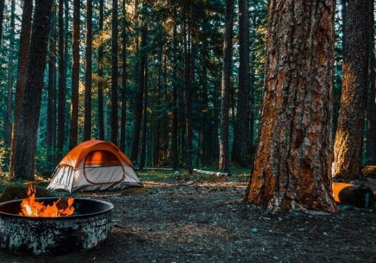 Check out How to Book a Campsite from Parks to RVs to Backyards at https://survivallife.com/book-a-campsite/
