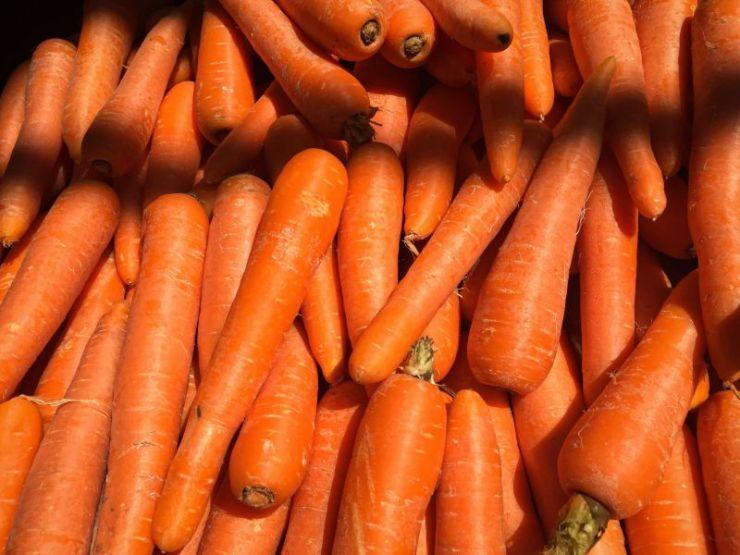 Carrots | Storing food