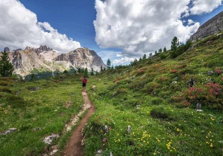 Check out List of Best Hikes in the U.S. for Your 2021 at https://survivallife.com/best-hikes-in-the-us/