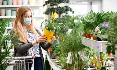 Woman Buying Flowers Shopping Cart Garden Center | Creating a Garden Budget | featured