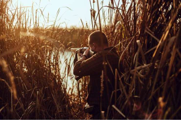 Young hunter man with a shotgun hiding in the reeds near the pond-summer hunting