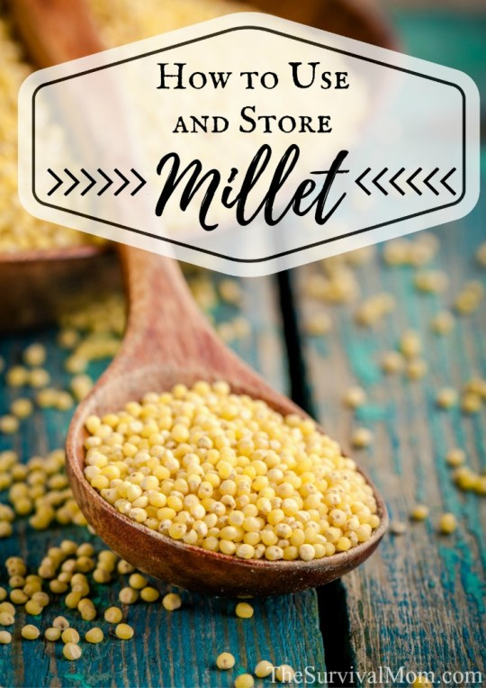 How to Use and Store Millet via Survival Mom Thrive