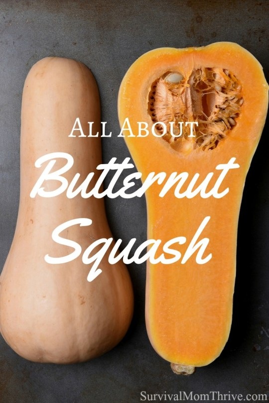 All About Butternut Squash & 12 Golden, Delicious Recipes to Use it in via Survival Mom Thrive