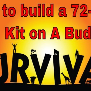 72 Hour Emergency Food Kit DIY: In Sane What You Can Load In One Bucket! You will be blown away!!!!!