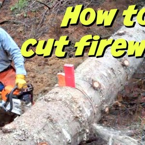 How To Cut Firewood like A PRO